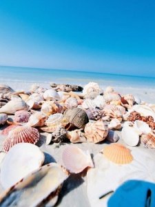 Sanibel & Captiva Islands