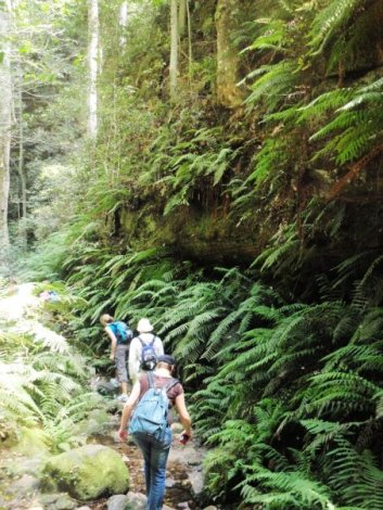 blue mountains, australia, united military travel, military travel loans, travel loans, military travel now and pay later